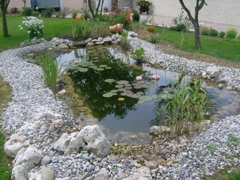 Comment choisir son filtre pour bassin for Filtre bassin poisson exterieur